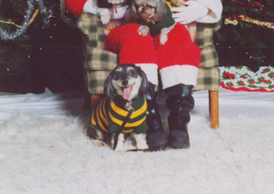 Santa with four dogs